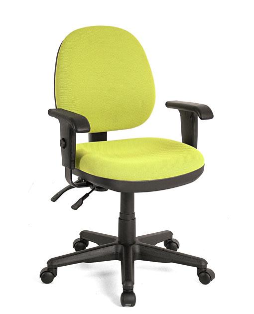Elegant Office Chair 辦公椅 U515B53D